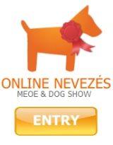 DOG SHOW Ltd.